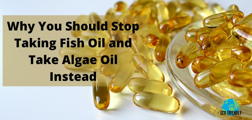 Why You Should Stop Taking Fish Oil and Take Algae Oil Instead